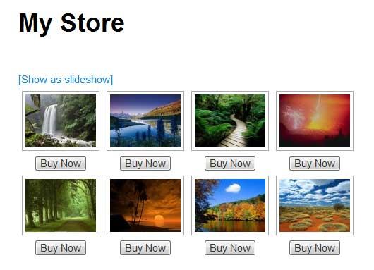 a screenshot showing the wordpress photo store