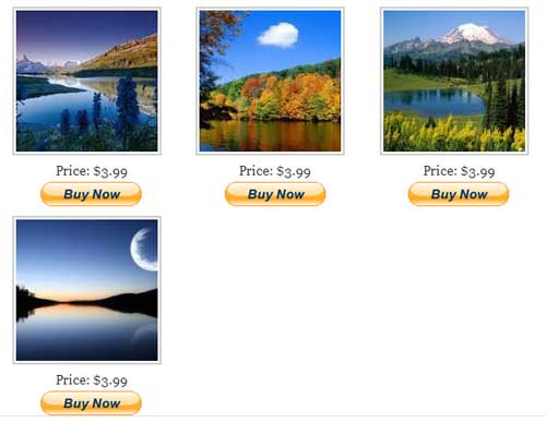 sell photos from wordpress demo