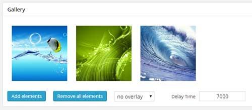 screenshot showing the gallery settings of coming soon plugin