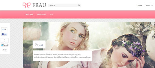 screenshot showing the PT Frau theme