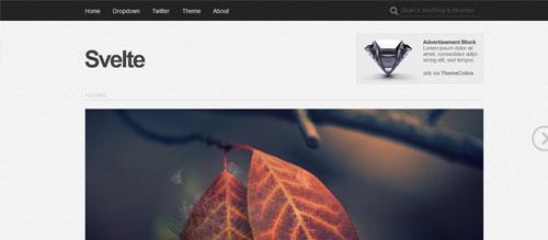 screenshot showing the PT Svelte theme